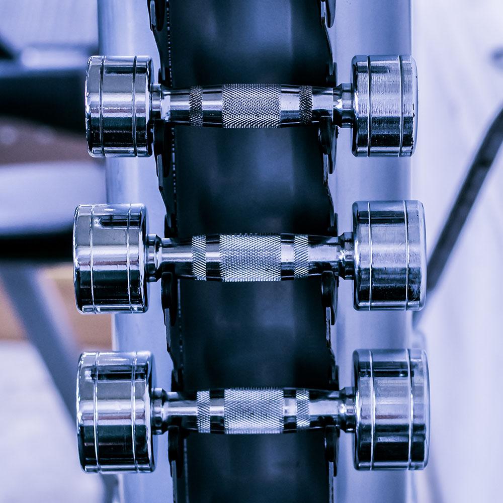 Lewey Training Hilpoltstein Fitness Hanteln